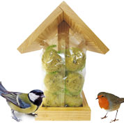 Kit birds feeder and fat balls